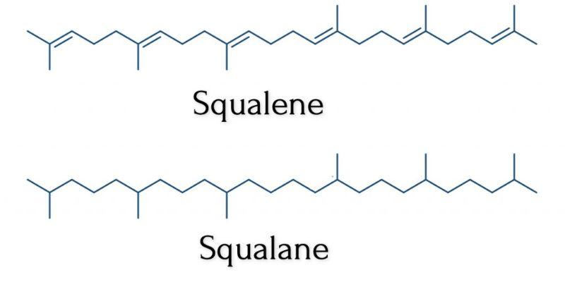 Squalene vs. Squalane